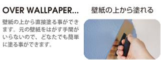 img07.shop-pro.jp1